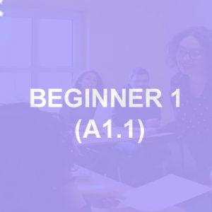 Beginner-A1-1